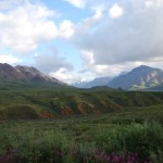 Denali Views 3
